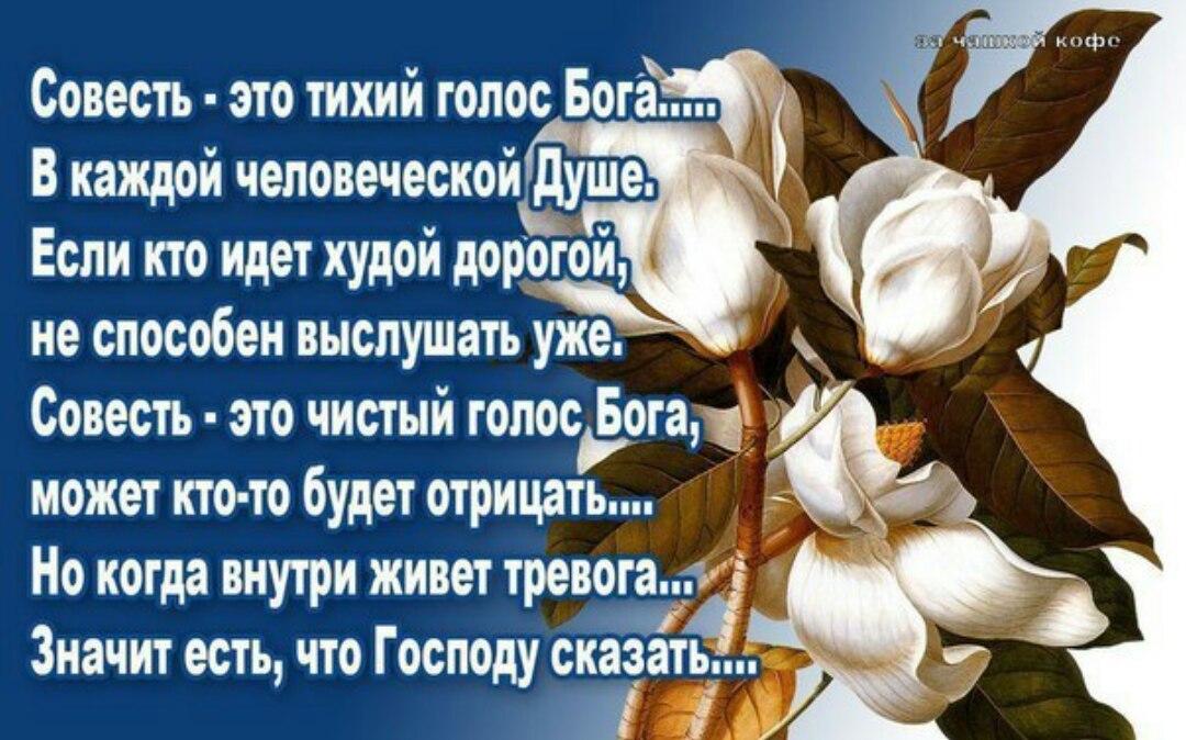 lvBSeHV-nnk.jpg