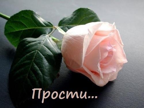 yuBNbwGTkDM.jpg